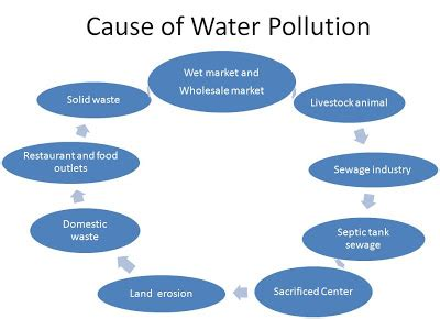 Environmental Pollution Essay Assisting students with
